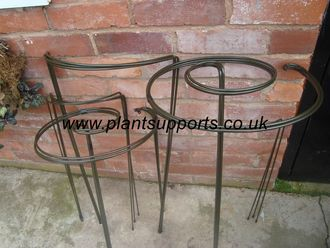 Herbaceous Border Plant Support Pack 0001