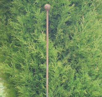 Iron Plant Stake Pack of 3 A0054 142cm high