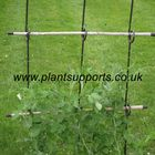 Pea Net Support Pack of 3 (112cm high)A0070