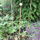Iron plant Stake Pack of 3 A0077 122cm high