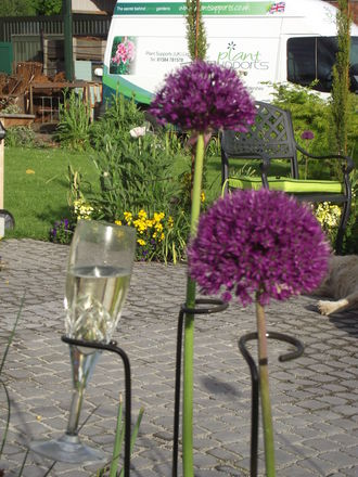 Loop pack of 4 - 5cm x 89cm high A0086: Allium or Champagne Flute holder!