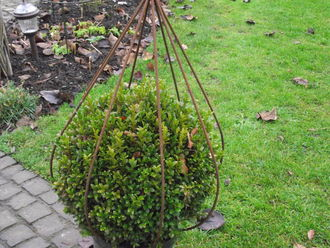 NEW 'Bud' Topiary Frame BUD11