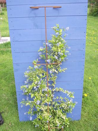 Plant Prop pack of 3 28cm x 151cm A0162